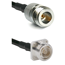 N Reverse Polarity Female on RG142 to 7/16 4 Hole Female Cable Assembly