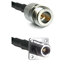 N Reverse Polarity Female on RG142 to N 4 Hole Female Cable Assembly