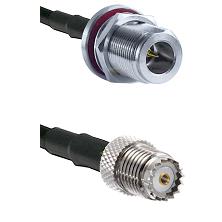 N Reverse Polarity Female Bulkhead on LMR240 Ultra Flex to Mini-UHF Female Cable Assembly