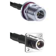 N Reverse Polarity Female Bulkhead Connector On LMR-240UF UltraFlex To N 4 Hole Female Connector Coa