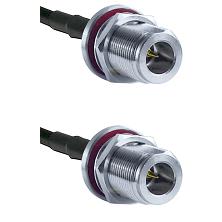 N Reverse Polarity Female Bulkhead on RG188 to N Reverse Polarity Female Bulkhead Cable Assembly