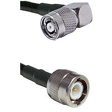 TNC Reverse Polarity Right Angle Male on LMR100 to C Male Cable Assembly