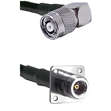 TNC Reverse Polarity Right Angle Male on RG142 to N 4 Hole Female Cable Assembly