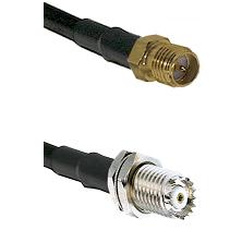 SMA Reverse Polarity Female Connector On LMR-240UF UltraFlex To Mini-UHF Female Bulkhead Connector C