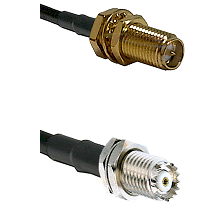 SMA Reverse Polarity Female Bulkhead Connector On LMR-240UF UltraFlex To Mini-UHF Female Bulkhead Co