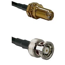 SMA Reverse Polarity Female Bulkhead on LMR240 Ultra Flex to BNC Reverse Polarity Male Coaxial Cable