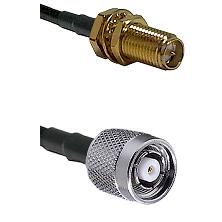 SMA Reverse Polarity Female Bulkhead on LMR240 Ultra Flex to TNC Reverse Polarity Male Coaxial Cable