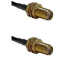 SMA Reverse Polarity Female Bulkhead on RG142 to SMA Reverse Polarity Female Bulkhead Coaxial Cable