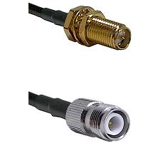 SMA Reverse Polarity Female Bulkhead on RG142 to TNC Reverse Polarity Female Cable Assembly