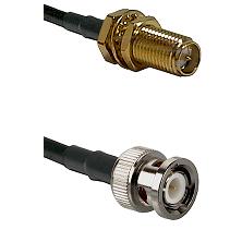 SMA Reverse Polarity Female Bulkhead on RG58C/U to BNC Male Cable Assembly