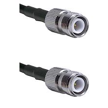 TNC Reverse Polarity Female on Belden 83242 RG142 to TNC Reverse Polarity Female Coaxial Cable Assem