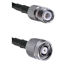 TNC Reverse Polarity Female on Belden 83242 RG142 to TNC Reverse Polarity Male Coaxial Cable Assembl