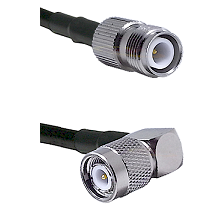 TNC Reverse Polarity Female on Belden 83242 RG142 to TNC Right Angle Male Cable Assembly