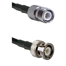 TNC Reverse Polarity Female on LMR100 to BNC Male Cable Assembly