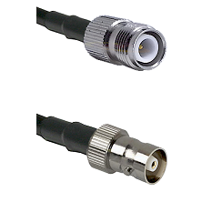 TNC Reverse Polarity Female on LMR100 to C Female Cable Assembly