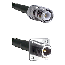 TNC Reverse Polarity Female on LMR100 to N 4 Hole Female Cable Assembly