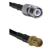 TNC Reverse Polarity Female on LMR-195-UF UltraFlex to SMA Reverse Polarity Female Coaxial Cable Ass