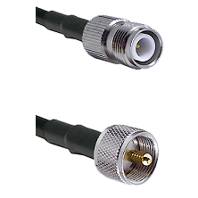 TNC Reverse Polarity Female on LMR240 Ultra Flex to UHF Male Cable Assembly