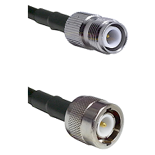 TNC Reverse Polarity Female on RG142 to C Male Cable Assembly