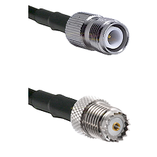 TNC Reverse Polarity Female on RG142 to Mini-UHF Female Cable Assembly