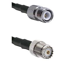 TNC Reverse Polarity Female on RG142 to Mini-UHF Female Cable Assembly