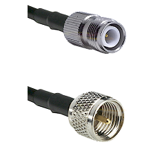 TNC Reverse Polarity Female on RG142 to Mini-UHF Male Cable Assembly
