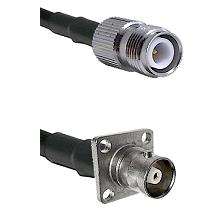 TNC Reverse Polarity Female on RG58C/U to C 4 Hole Female Cable Assembly