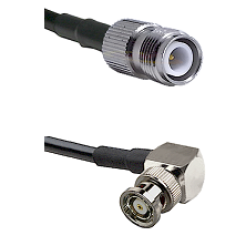 TNC Reverse Polarity Female on RG58C/U to BNC Reverse Polarity Right Angle Male Coaxial Cable Assemb
