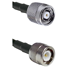 TNC Reverse Polarity Male on LMR100 to C Male Cable Assembly