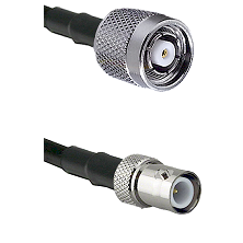 TNC Reverse Polarity Male on LMR100 to BNC Reverse Polarity Female Cable Assembly