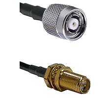 TNC Reverse Polarity Male on LMR100 to SMA Reverse Polarity Female Bulkhead Cable Assembly