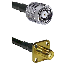 TNC Reverse Polarity Male on LMR100 to SMA 4 Hole Female Cable Assembly