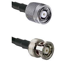 TNC Reverse Polarity Male on LMR200 UltraFlex to BNC Reverse Polarity Male Cable Assembly