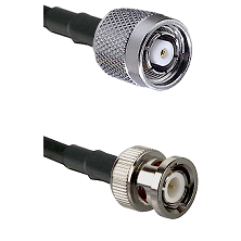 TNC Reverse Polarity Male on RG142 to BNC Male Cable Assembly