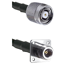 TNC Reverse Polarity Male on RG142 to N 4 Hole Female Cable Assembly