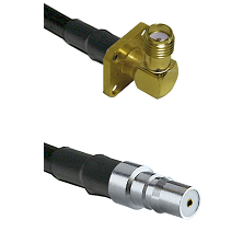 SMA 4 Hole Right Angle Female on LMR100 to QMA Female Cable Assembly