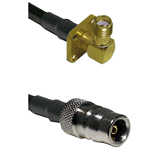 SMA 4 Hole Right Angle Female on LMR100 to QN Female Cable Assembly