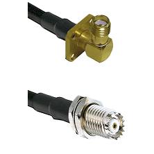 SMA 4 Hole Right Angle Female Connector On LMR-240UF UltraFlex To Mini-UHF Female Bulkhead Connector
