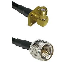 SMA 4 Hole Right Angle Female on RG58C/U to Mini-UHF Male Cable Assembly