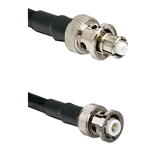 SHV Plug on Belden 83242 RG142 to MHV Male Cable Assembly