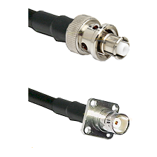 SHV Plug on LMR200 UltraFlex to BNC 4 Hole Female Cable Assembly