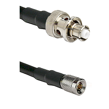 SHV Plug on RG58C/U to 10/23 Male Cable Assembly