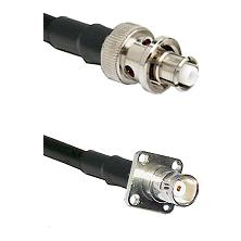 SHV Plug on RG58C/U to BNC 4 Hole Female Cable Assembly