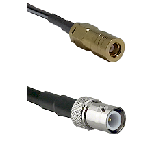SLB Female on LMR100 to BNC Reverse Polarity Female Cable Assembly