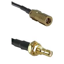 SLB Female on LMR100/U to SMB Male Bulkhead Cable Assembly