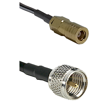 SLB Female on RG142 to Mini-UHF Male Cable Assembly