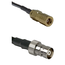 SLB Female on RG58C/U to C Female Cable Assembly