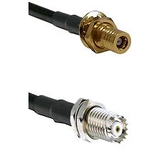 SLB Female Bulkhead on RG142 to Mini-UHF Female Cable Assembly