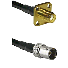 SMA 4 Hole Female on RG142 to BNC Female Cable Assembly