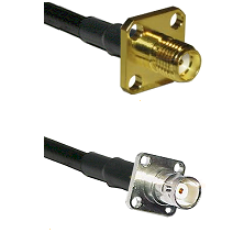 SMA 4 Hole Female on RG142 to BNC 4 Hole Female Cable Assembly